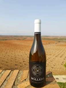 Vino blanco Hacienda Molleda Blanco Garnacha